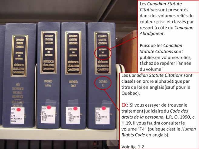 Une photo de plusieurs volumes du Canadian Statute Citations.